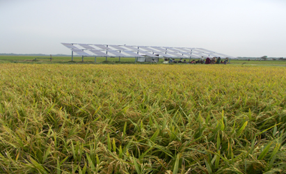 solar use for irrigation